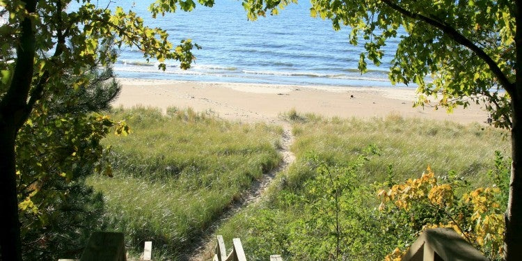 a wooden path leading to the water at indiana dunes national park