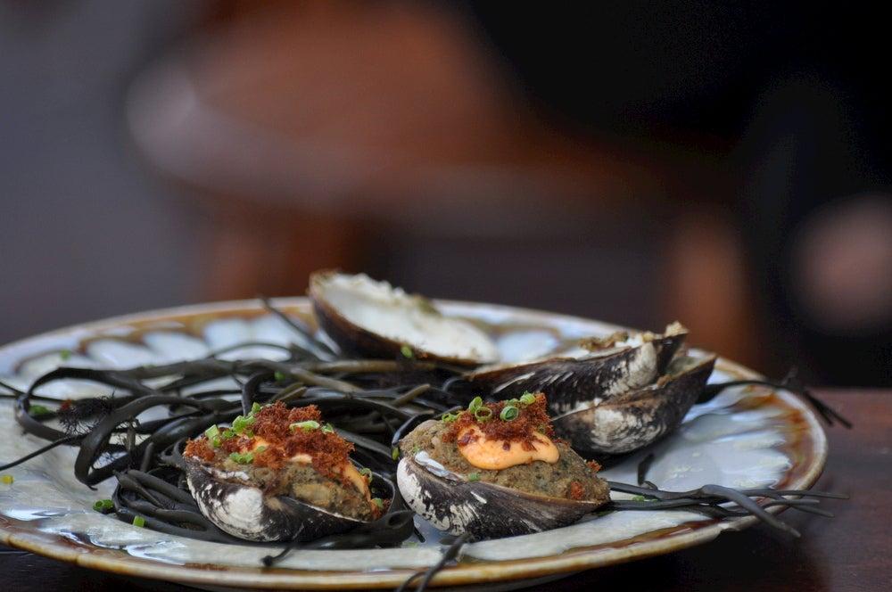 Fresh gourmet oysters in Portland.