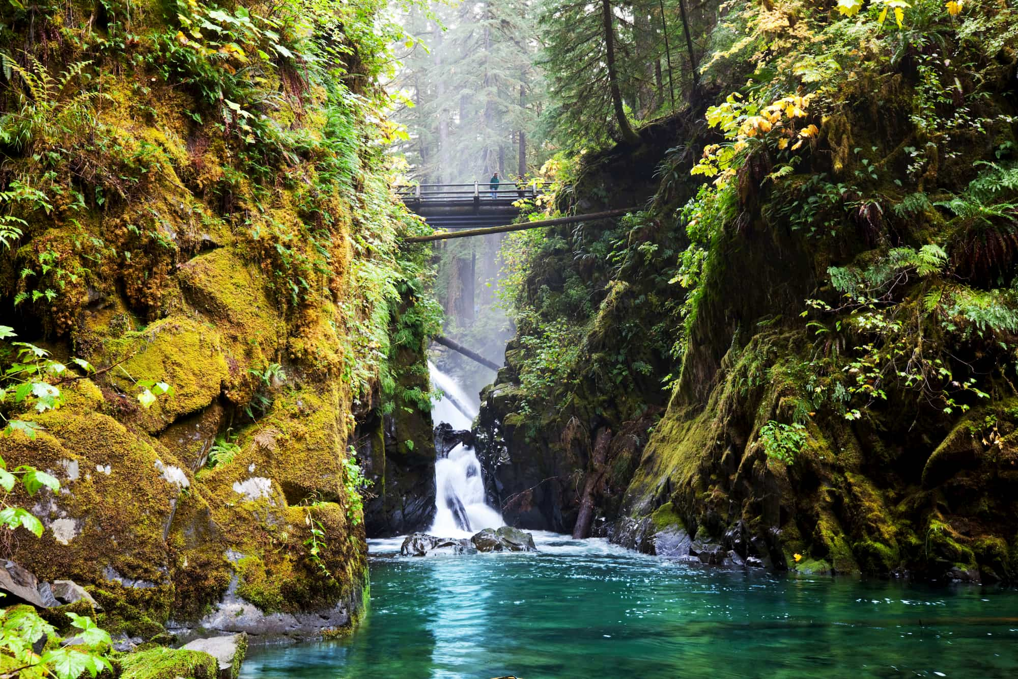 Mossy, tree-lined canyon with blue river and bridge in background