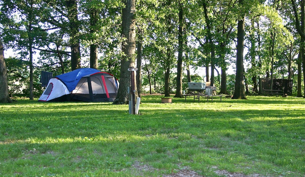 large tent set up in grassy campsite surrounded by tall trees