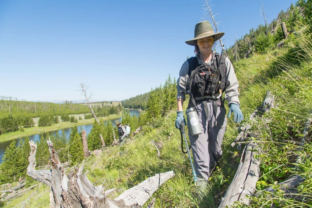 a woman spraying plants near a river in yellowstone national park
