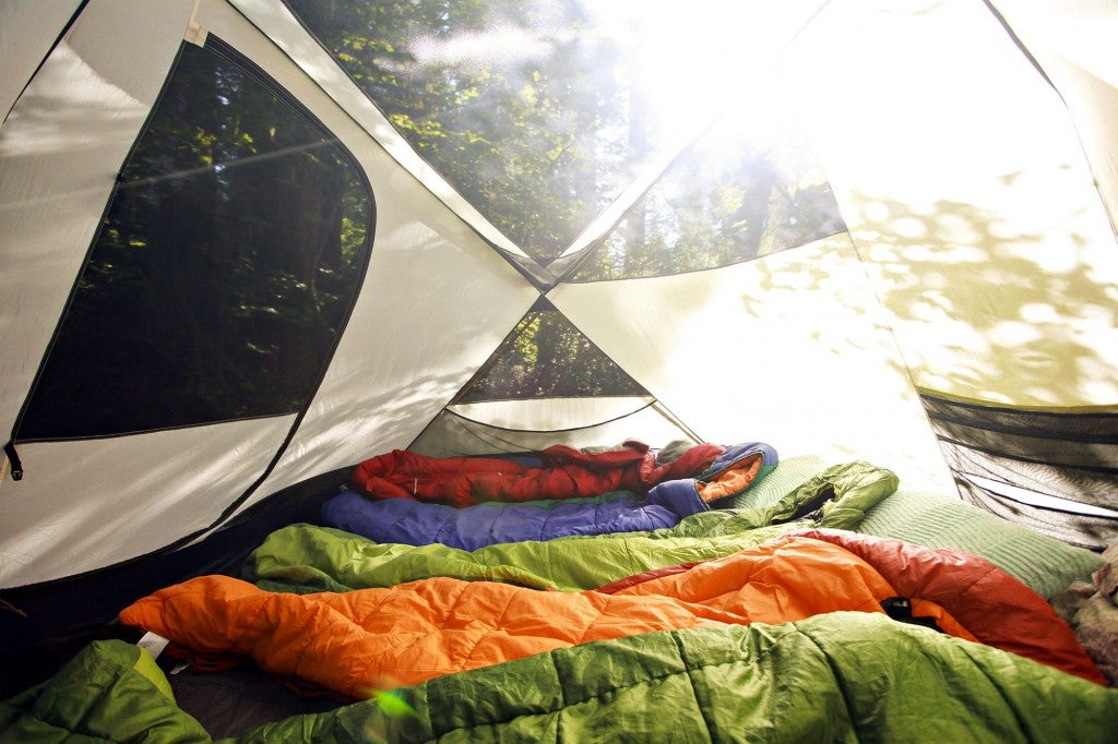 a row of sleeping bags lining the inside of a tent at a campsite
