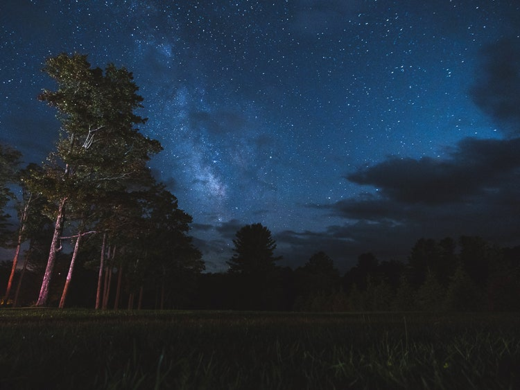 a clearing in the forest at night with the milky way seen above in pennsylvania
