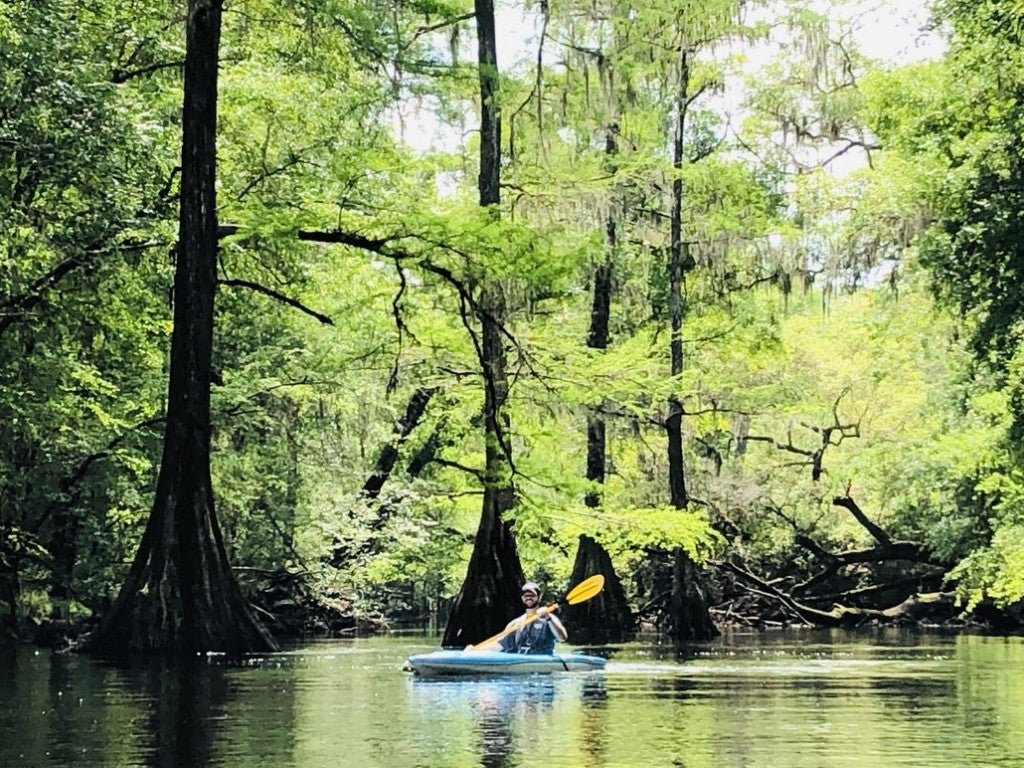 a man paddles on a kayak in oleno state park in florida