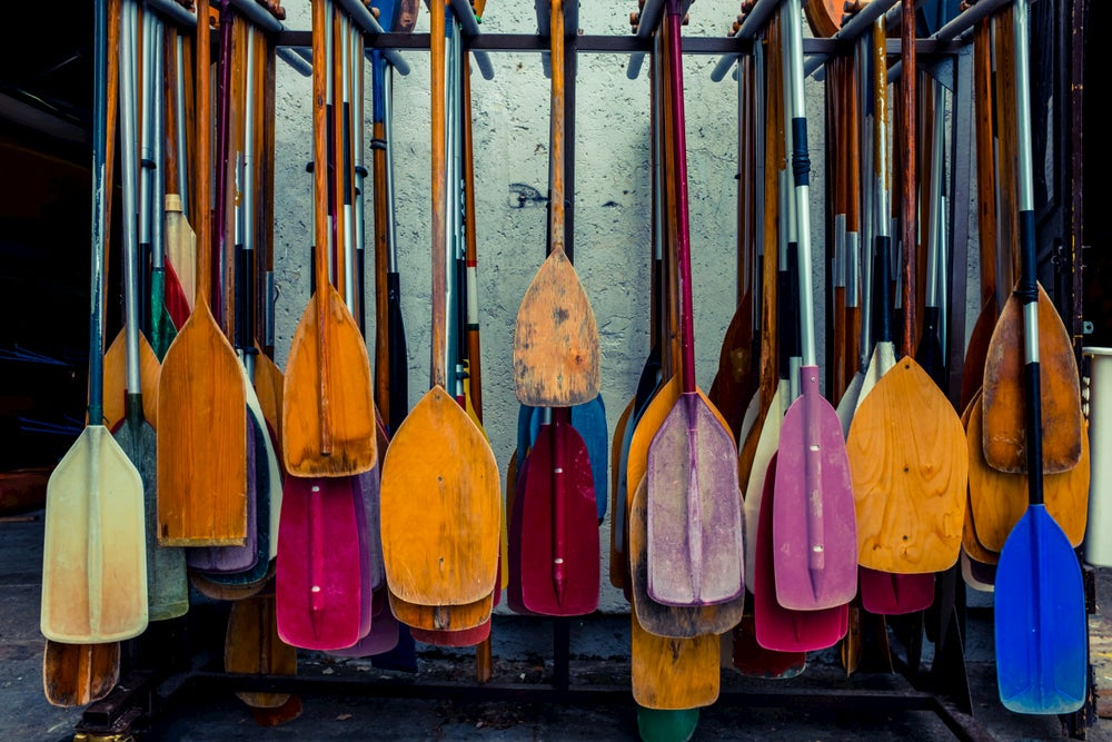 Colorful canoe paddles hanging on a wall