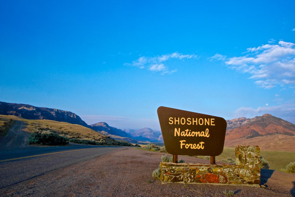 A sign for the entrance of the shoshone national forest on a roadside in wyoming