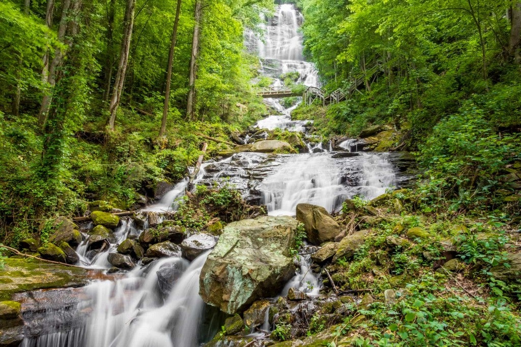 Greenery surrounds rushing waterfall in amicalola falls state park