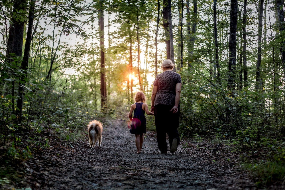 Grandmother with granddaughter and dog walking in forest