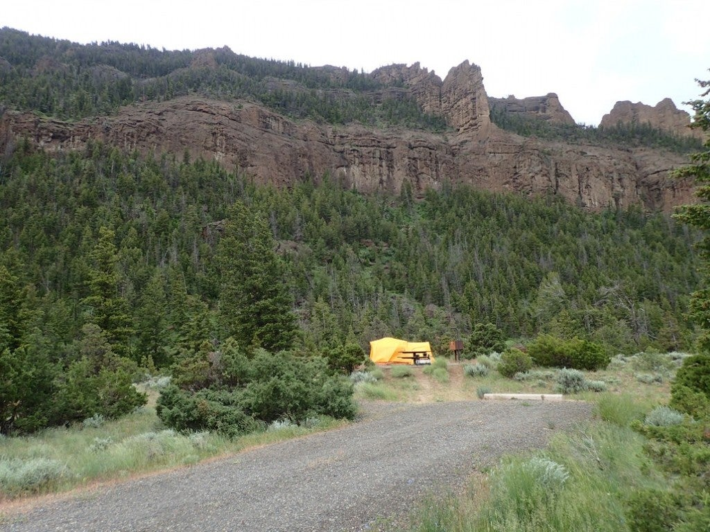 a tellow tent tucked in a forest next to a bluff in the shoshone national forest