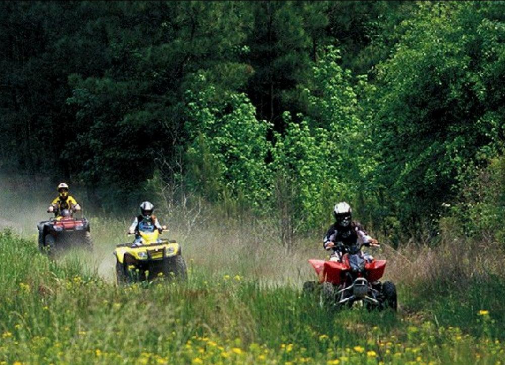 4x4 Group driving through a field.