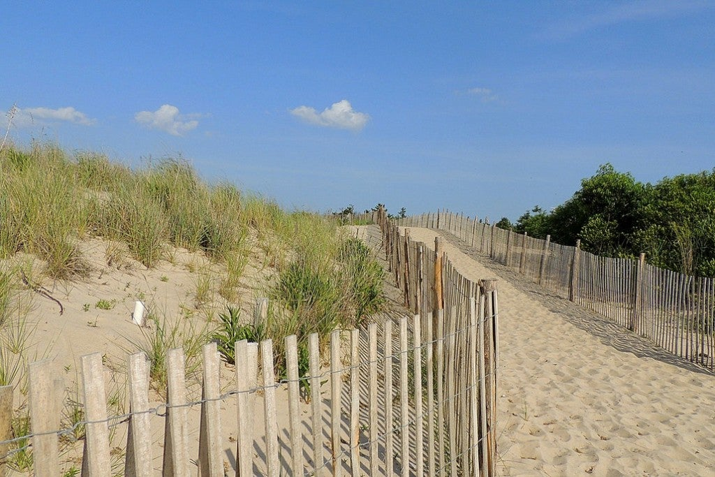 a path leading from the land to the beach over sand dunes in delaware