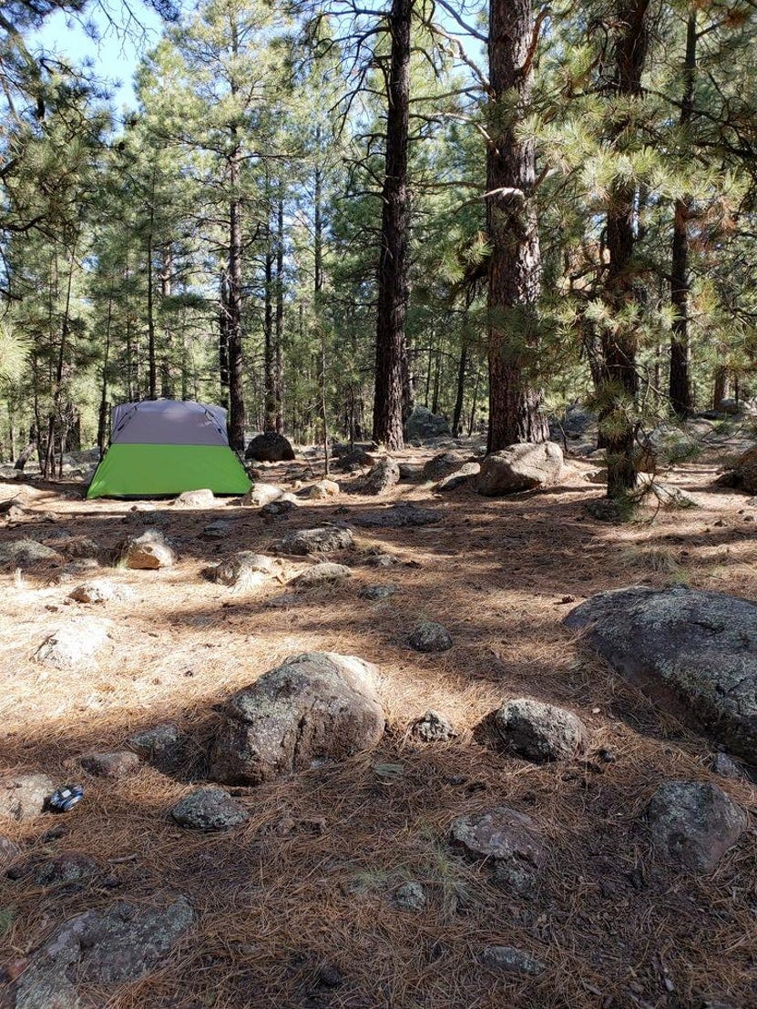 Tent setup in rocky forested campground.