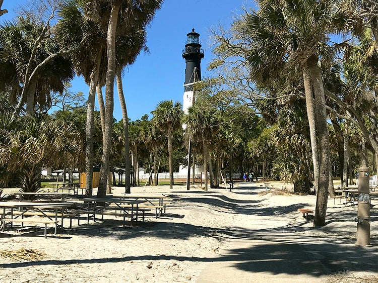 lighthouse hovers over sand and palm trees at hunting island state park