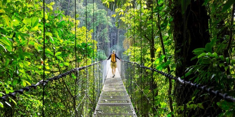 Man walking on fence surrounding by jungle
