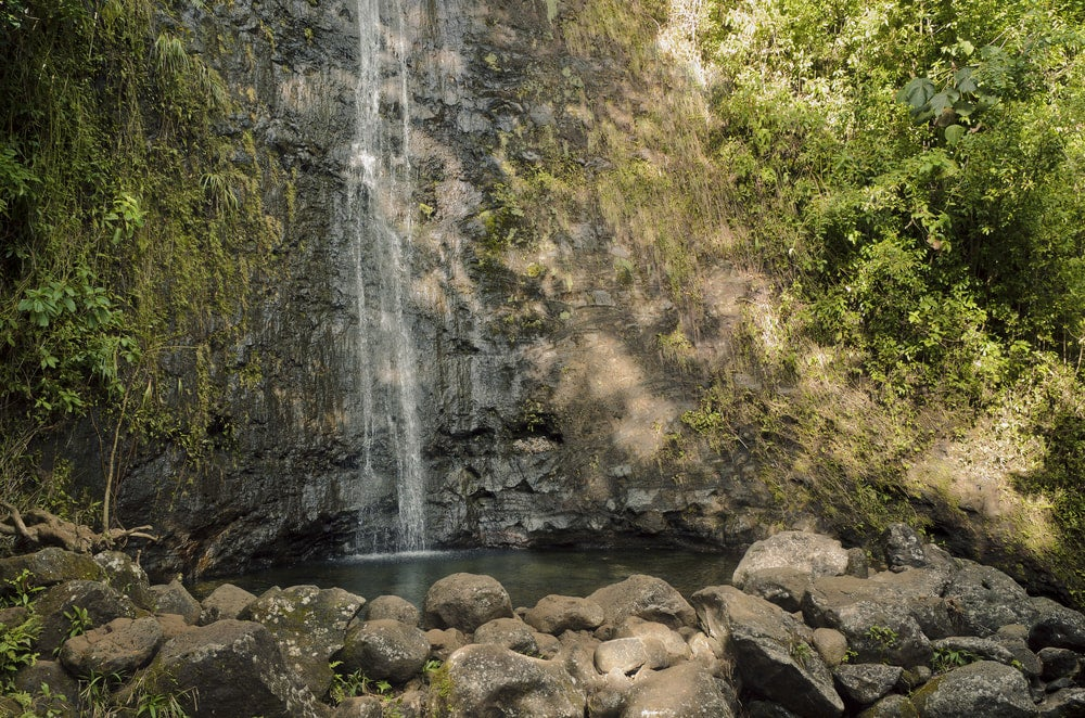 manoa falls emptying into a pond seen from oahu hikes