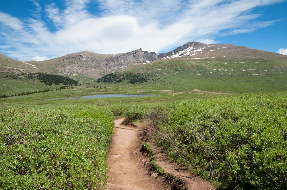 trail leading up to handies peak in colorado in the summer