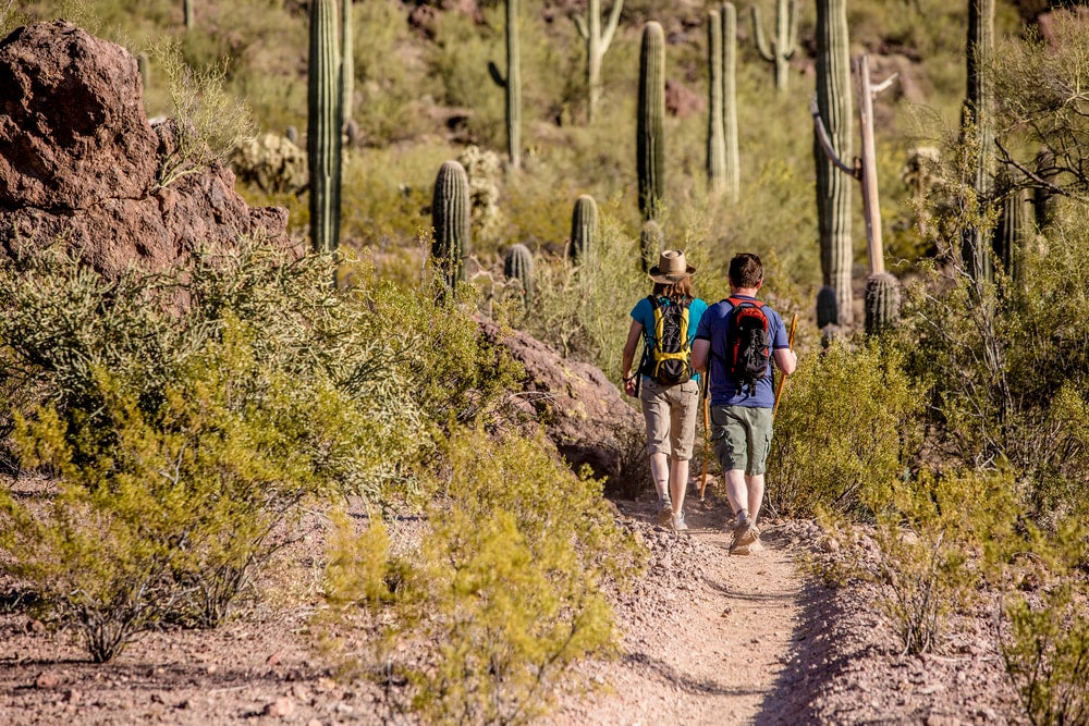Two people hiking in an Arizona desert with cacti nearby