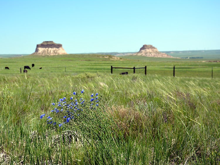 buttes in pawnee grassland colorado