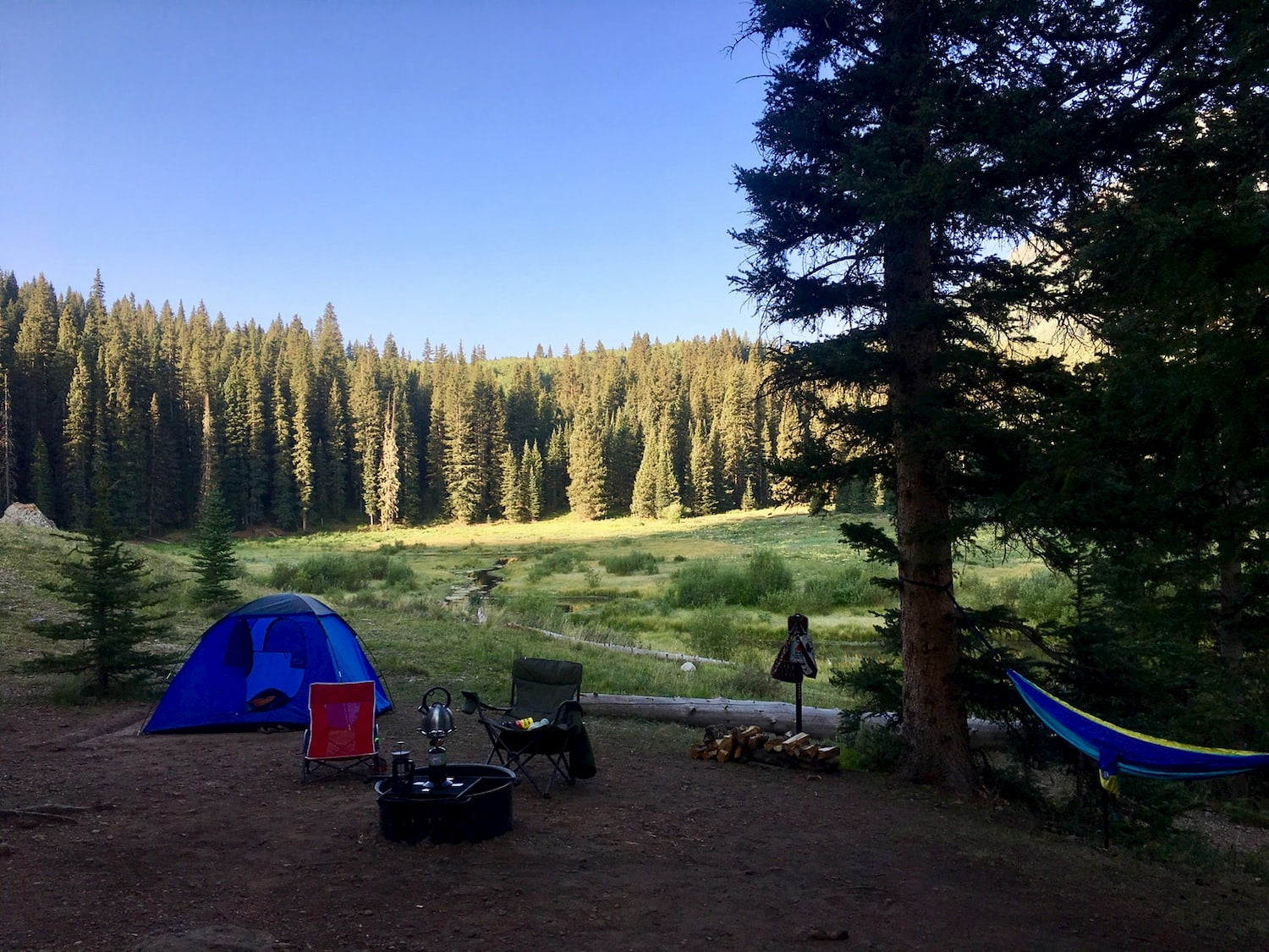 Dawn at wooded campsite with tent and hammock.