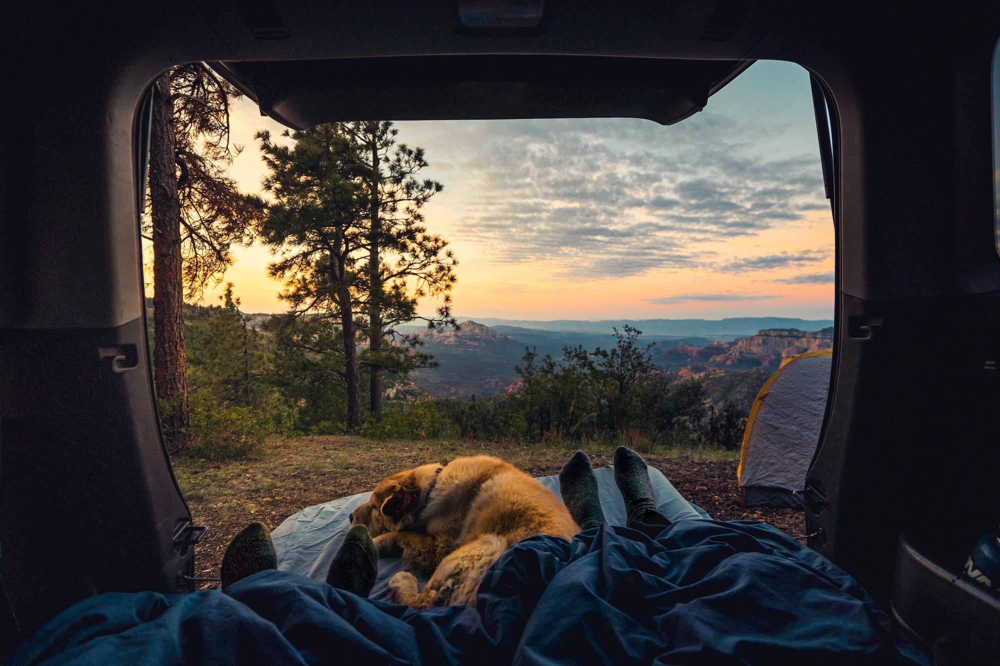 Two people and dog sharing camping blanket in the back seat of a car in the mountains.
