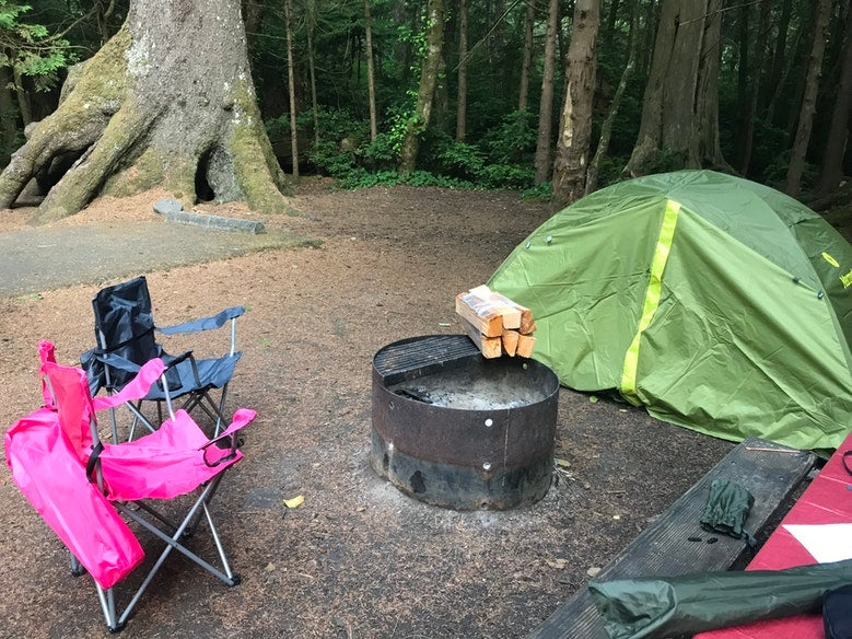 tent and camp chairs set up at Cape Lookout State Park campsite in Oregon, photo from a camper on The Dyrt