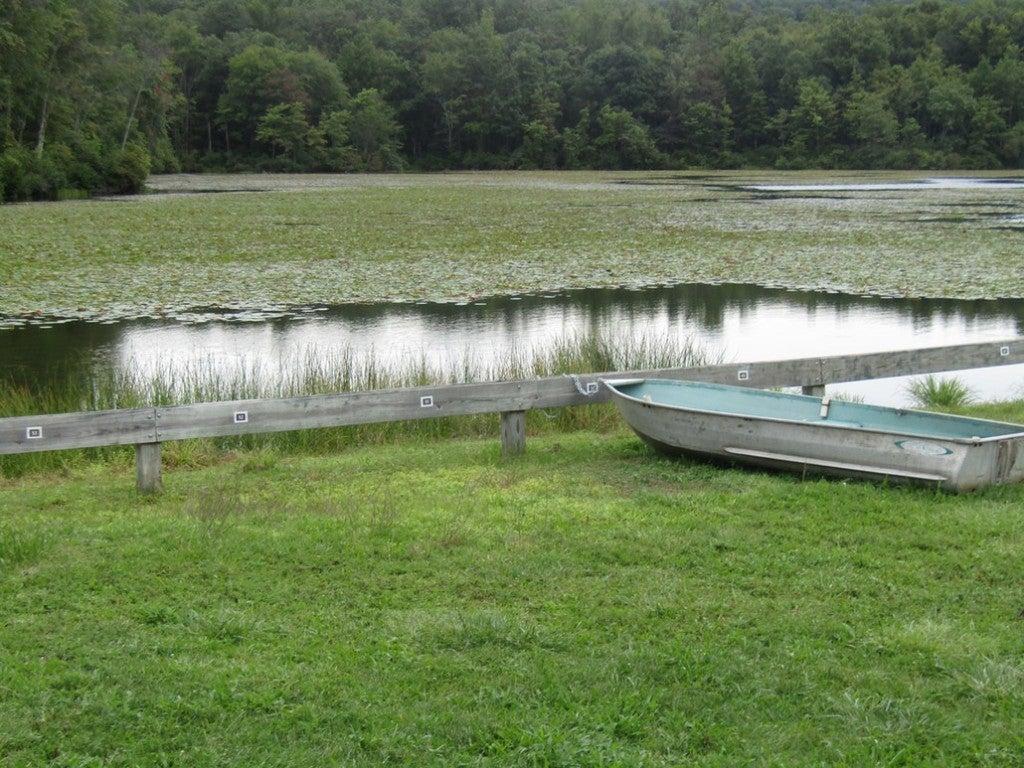 a boat near a river in pennsylvania
