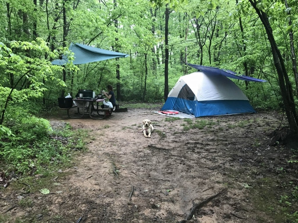 a tent and picnic table at a campsite in Pennsylvania