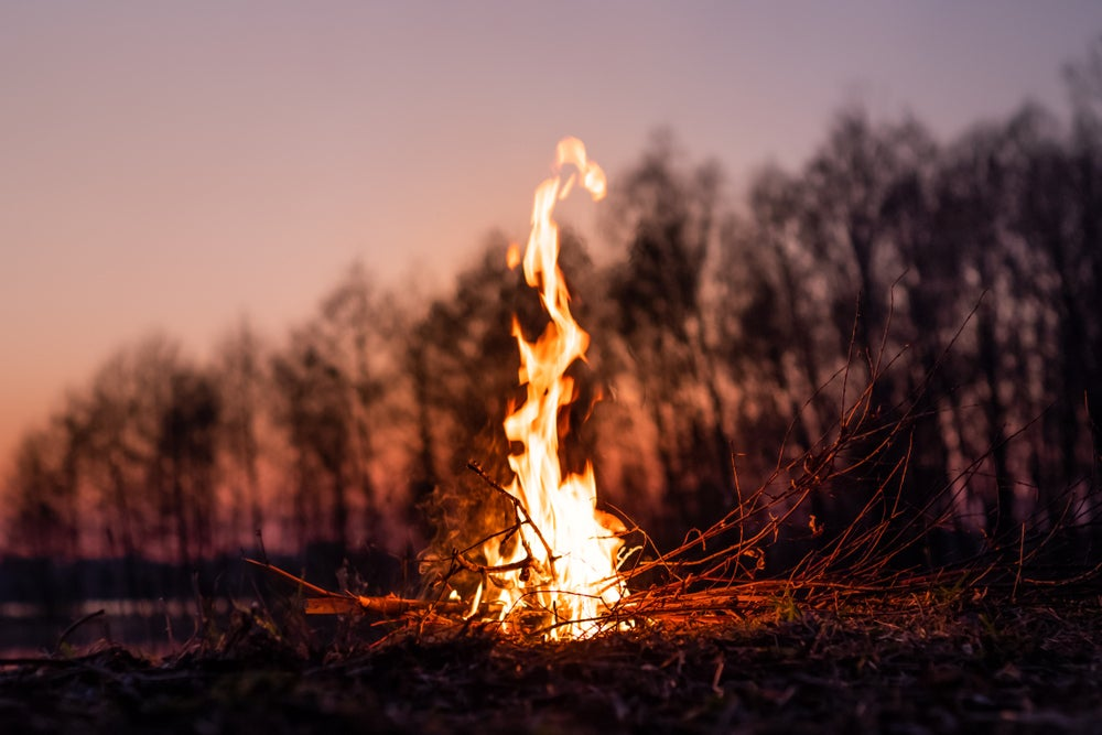 a fire at dusk in a forest