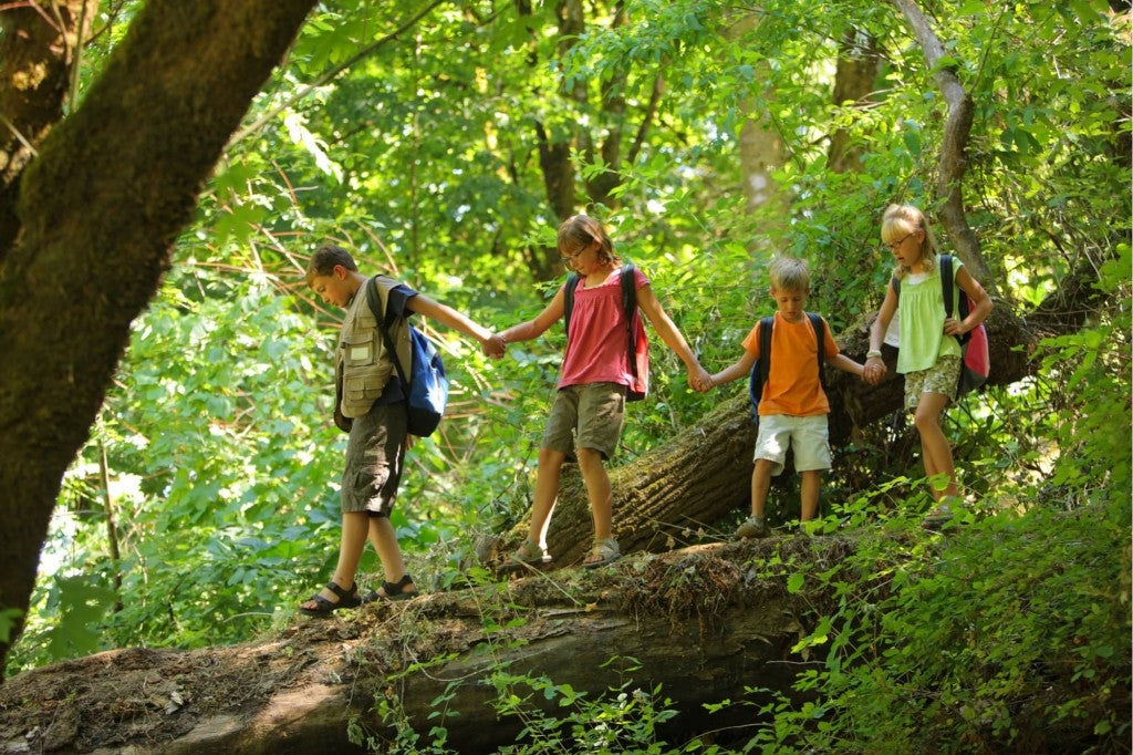 children in a line in the woods walking over a log