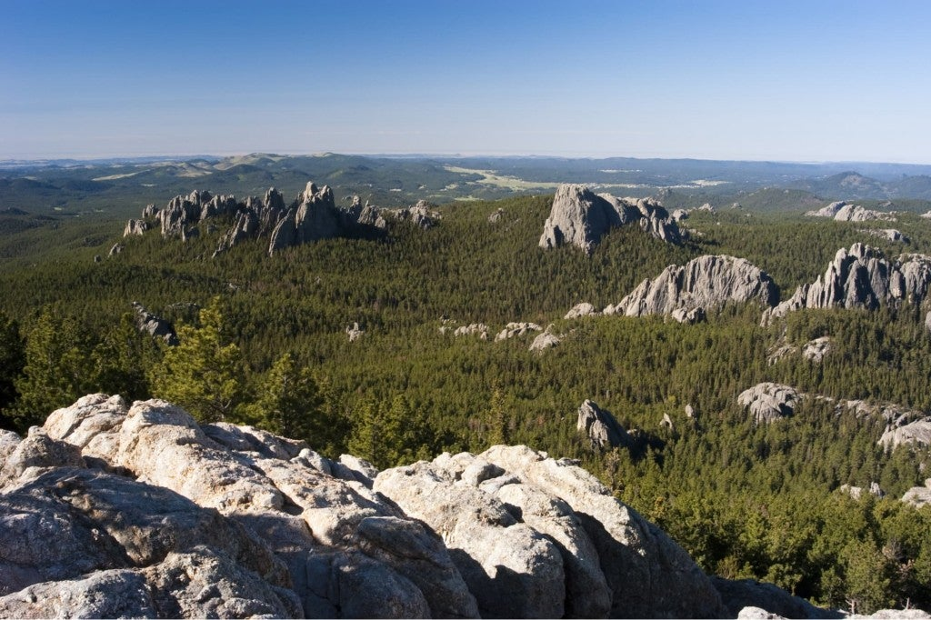 rocky hills in the black hills national forest