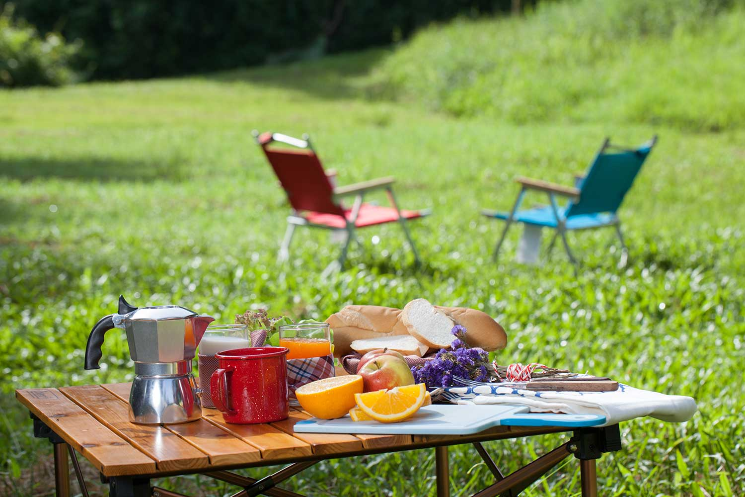 picnic table covered in fruit and flowers next to two folding chairs