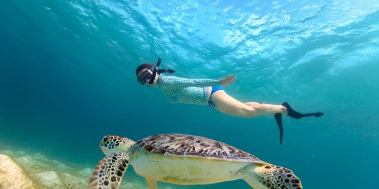 Woman snorkeling with sea turtle