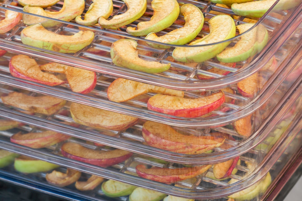 Dehydrated fruit stacked in glass pans.