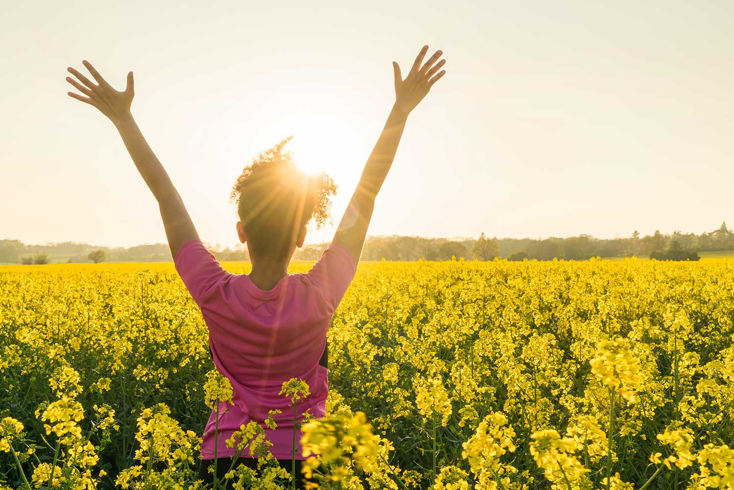 Woman with hands raised in the air watching the sunrise in a field of yellow flowers