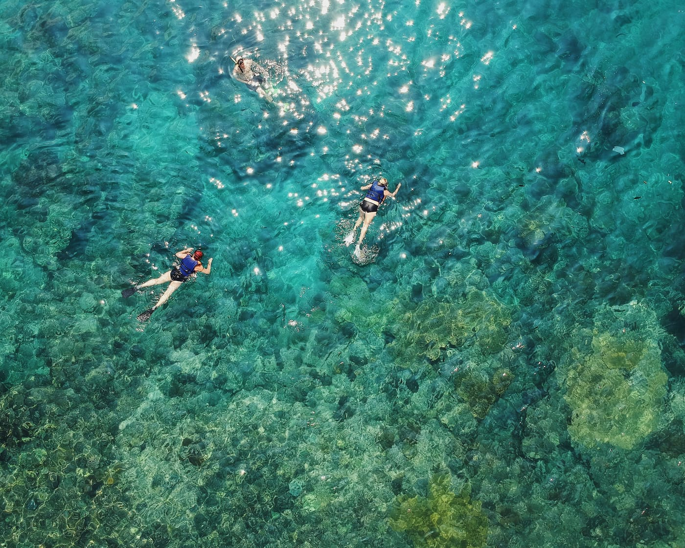 3 snorkelers swimming above a coral reef.
