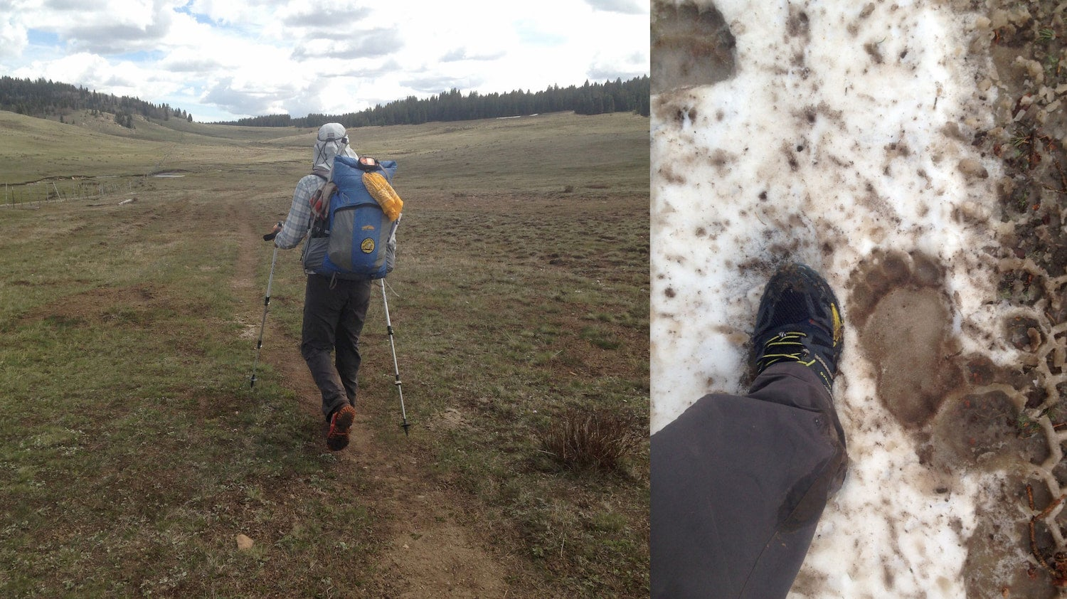 Left: Backpacker hiking through a field Right: Hiker wearing Brooks Cascadia while hiking through snow