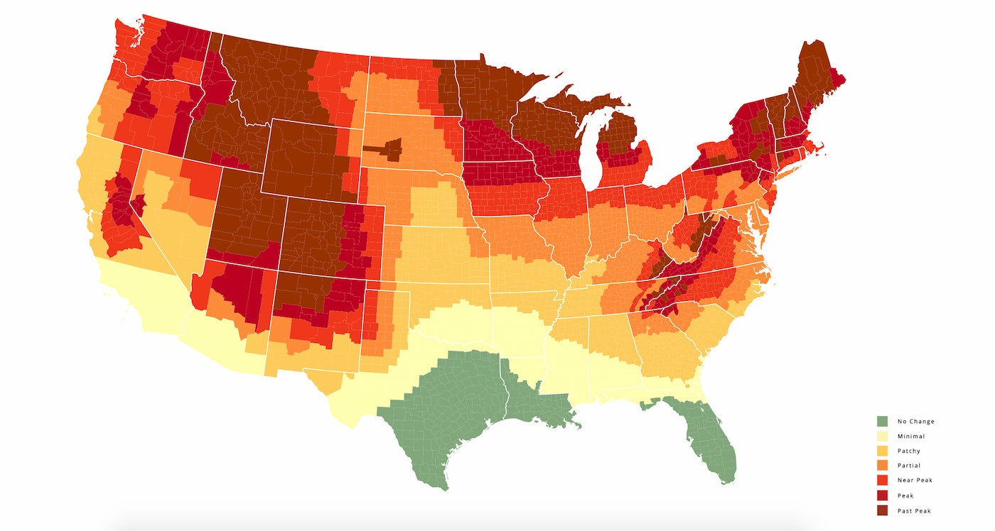 Fall Foliage map for ideal fall camping.