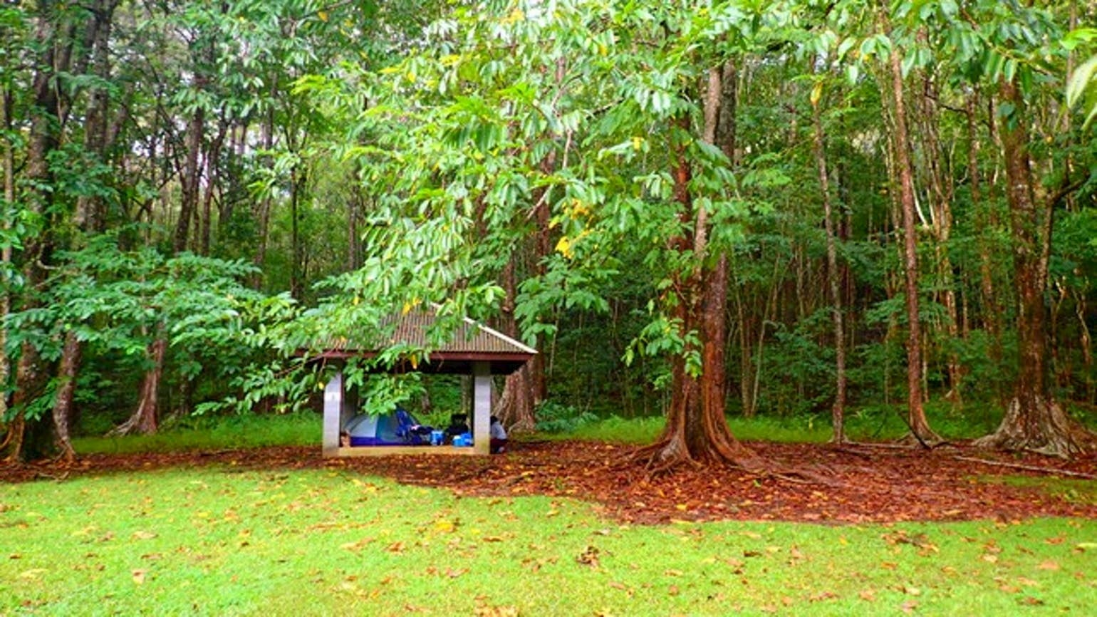 Tent under shelter in lush forested area.