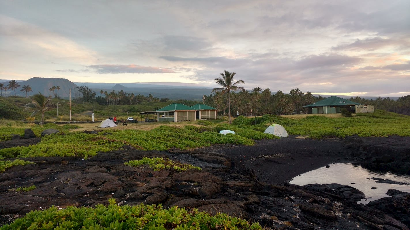 Tents setup in field of lava rock and brush surrounded by palm trees.