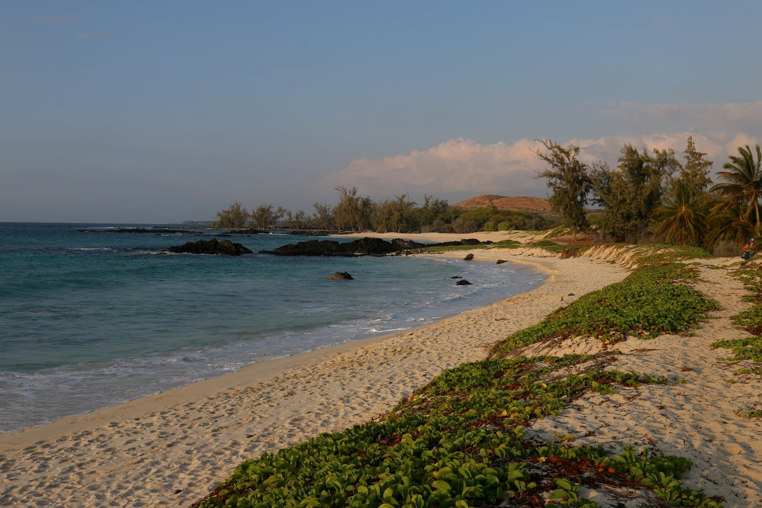 Beach landscape at golden hour at Spencer Beach.