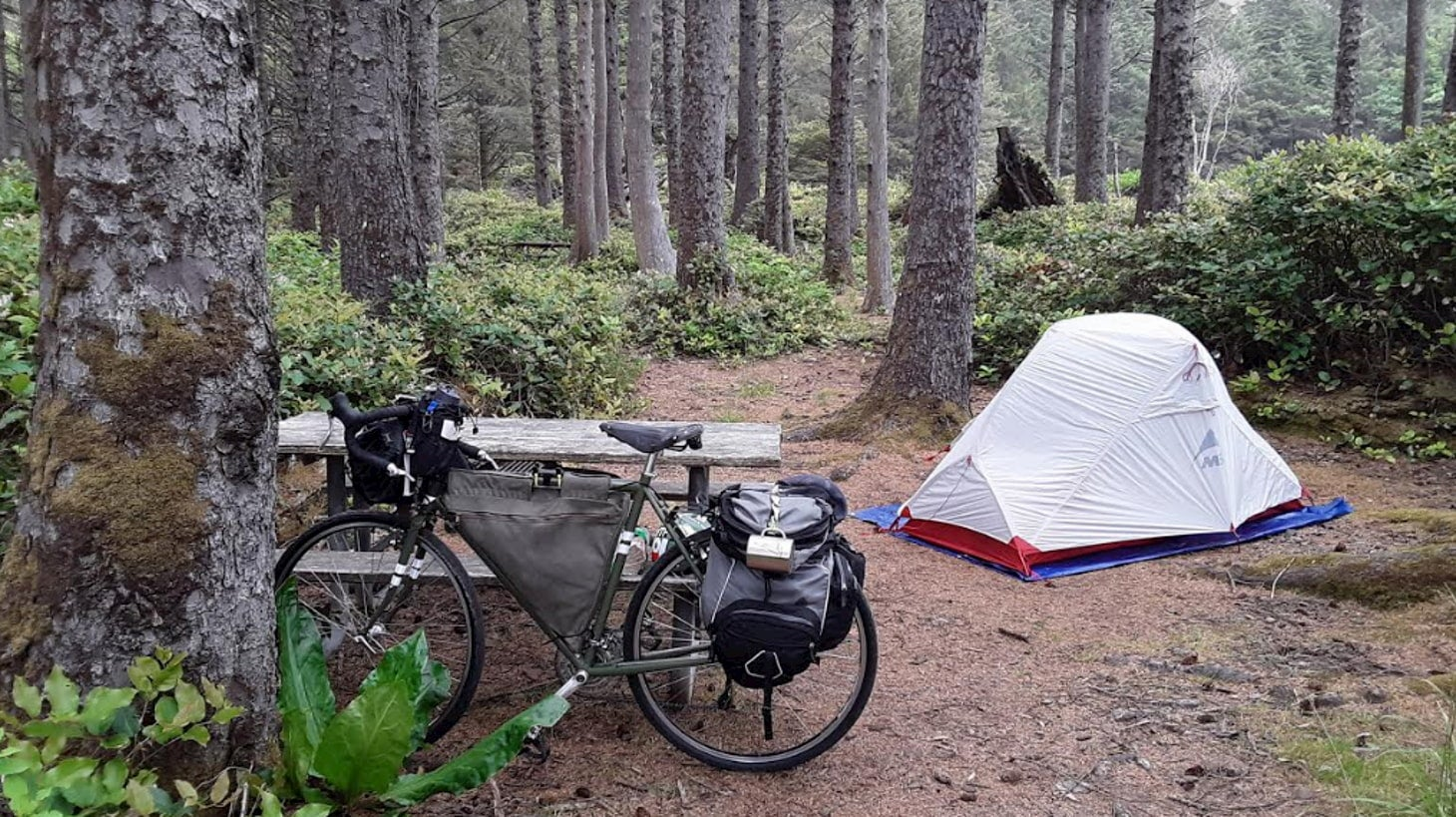 Campsite at cape lookout in forested area with tent and bike.