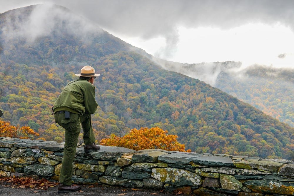 Park ranger overlooking a valley.