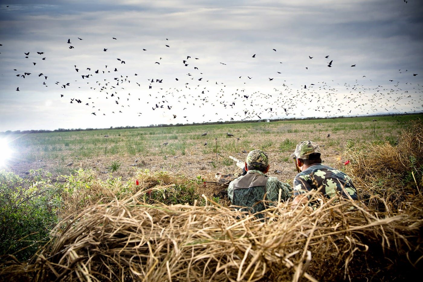 Hunters crouching a field below a flock of birds.