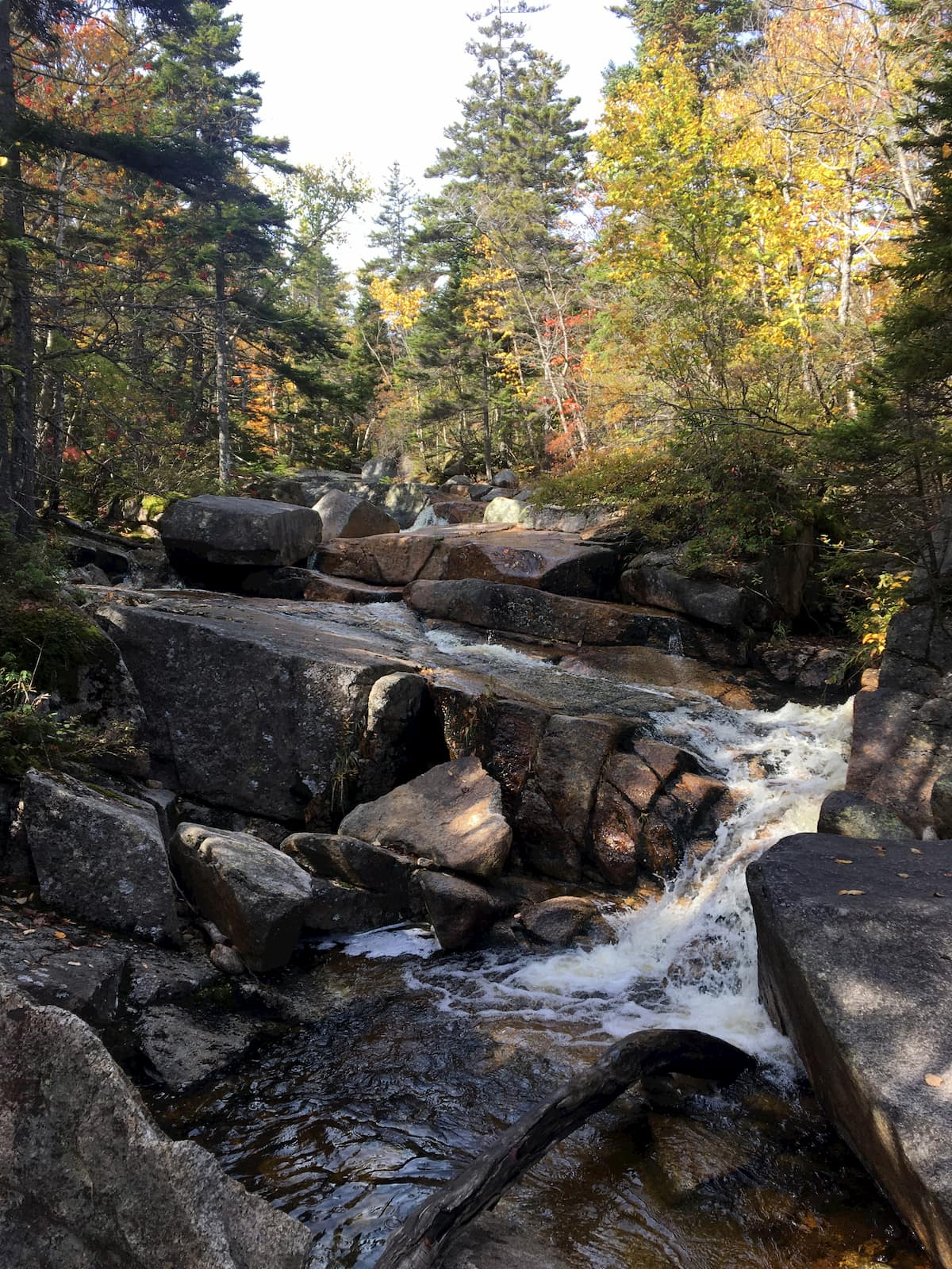 Rushing waterfall beside hut trail in the White mountains.,