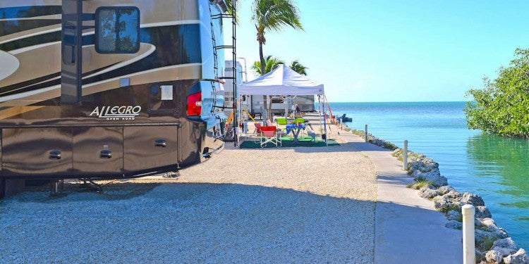 RVs parked along tropical seashore.