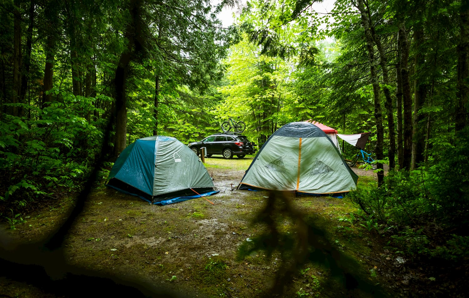 Car parked in the forest beside two tents.