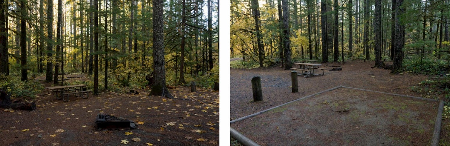 side-by-side photos of two campsites, one with a tent pad and both with picnic tables