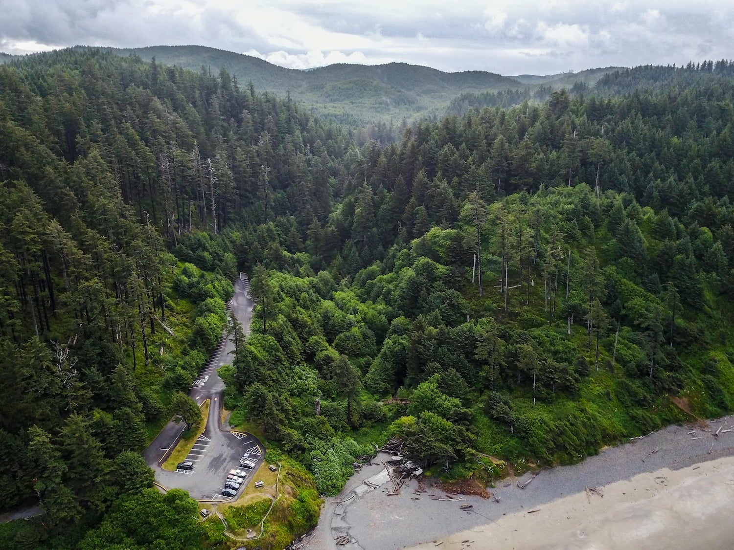 Aerial drone photo of Dense green forest on the Oregon Coast. Ecola state park.
