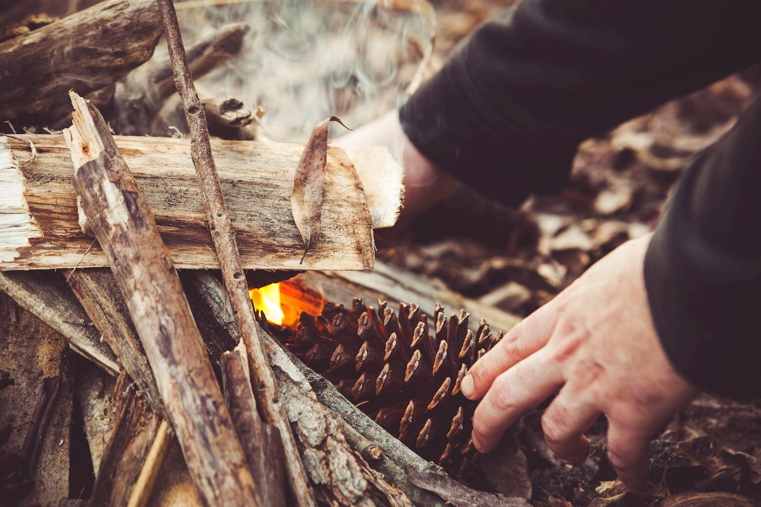 hands starting fire with a pinecone
