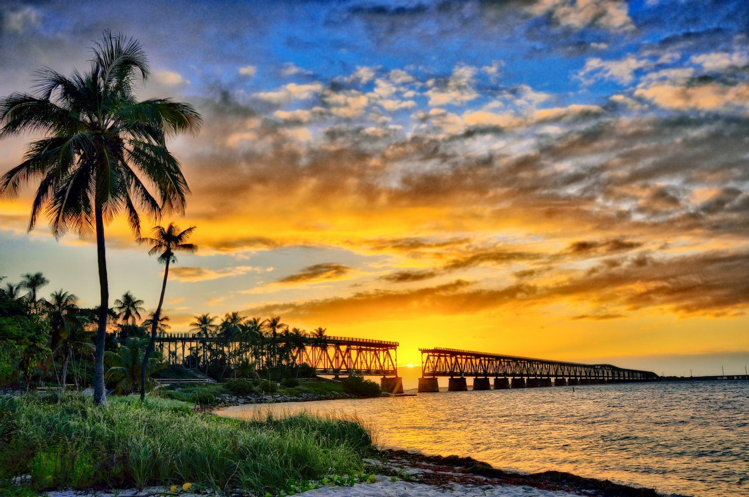 sunset of beach, pier, and palm tress at bahia honda state park